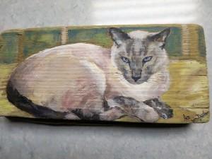 Ace, Jeans cat (2)